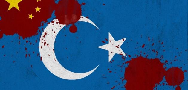 Doğu Türkistan'daki Toplama Kampları Üzerine Basın Açıklaması